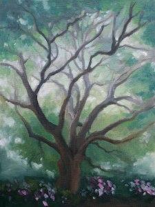 Tree-in-Daniel-Island-c