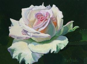 Rose-12_29_15